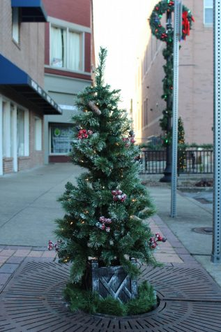 A tree is decorated for the holidays. Decorations are a big part of many student