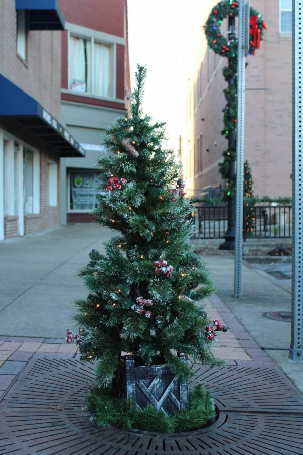 A tree is decorated for the holidays. Decorations are a big part of many student's traditions.